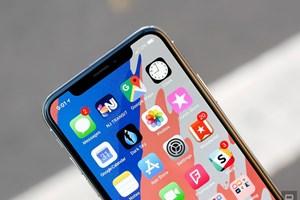 Apple đặt hàng màn hình OLED từ LG để giảm phụ thuộc vào Samsung