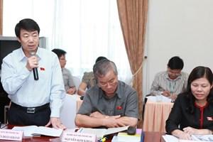 Hạn chế giao Chính phủ quy định điều khoản thi hành Luật