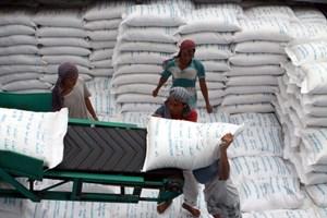Cần Thơ phấn đấu xuất khẩu 1 triệu tấn gạo năm 2014