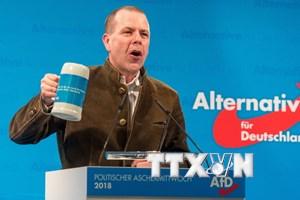 Đức: Tỷ lệ ủng hộ đảng cực hữu AfD tăng kỷ lục, vượt qua SPD