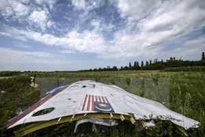 Australia có thể mở phiên tòa xét xử vụ bắn rơi máy bay MH17