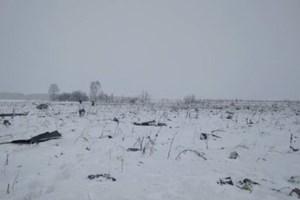 Vụ rơi máy bay ở Nga: Không có tên người Việt trong danh sách nạn nhân