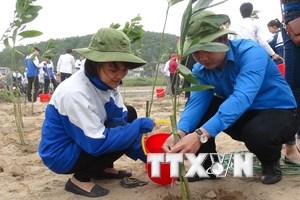 Việt Nam sẽ góp 1 triệu USD vào Quỹ Khí hậu xanh thế giới