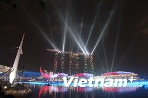 [Photo] Rực rỡ pháo hoa và ánh sáng chào đón Năm mới ở Singapore