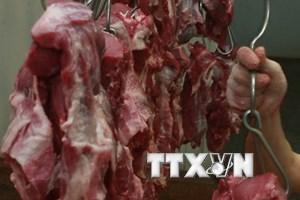 """Tin bịa đặt """"thịt lợn có sâu"""" khiến người chăn nuôi Lào Cai khốn đốn"""