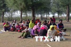 Myanmar sẽ sớm hồi hương người Rohingya bất chấp cảnh báo của LHQ