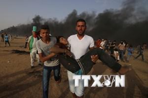 ICRC lo ngại về cuộc khủng hoảng y tế trầm trọng tại Dải Gaza
