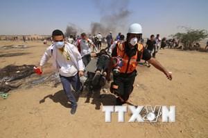 Palestine: Israel phải chịu trách nhiệm về những cuộc tấn công