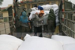 Hỗ trợ khẩn cấp 2.000 tấn gạo cho người dân vùng lũ Bình Định