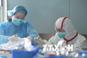 Trung Quốc ghi nhận thêm 6 ca nhiễm virus cúm gia cầm H7N9