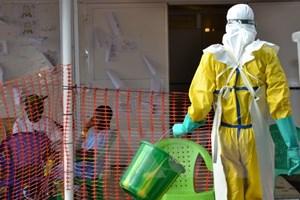 Cộng hòa Dân chủ Congo đã kiểm soát được dịch bệnh Ebola