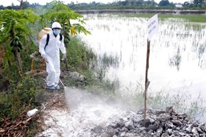 Đắk Nông cơ bản khống chế ổ dịch cúm A/H5N1 trên gia cầm
