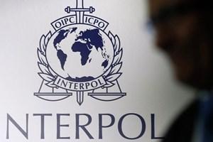 Interpol kêu gọi chung tay ngăn chặn mối đe dọa an ninh toàn cầu