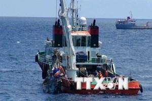 Vớt được 2 hộp đen máy bay CASA-212, tìm thấy thêm 2 thi thể