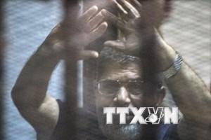 Ai Cập thu quỹ của cựu Tổng thống Morsi và hơn 200 thành viên MB