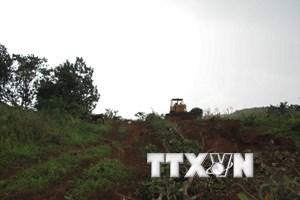 Vụ nổ súng tranh chấp đất rừng: Tạm giam Phó Giám đốc Công ty Long Sơn