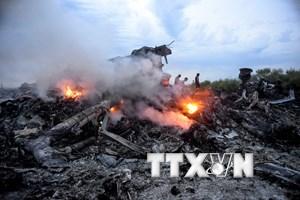 Vụ máy bay MH17 bị bắn hạ: Gia đình Australia đầu tiên được đền bù
