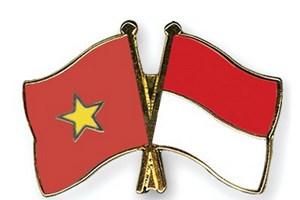 Vai trò của các tổ chức trong thúc đẩy hợp tác Việt Nam-Indonesia