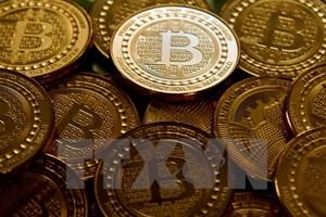 Nhiều nhà đầu tư cơ hội ''vã mồ hôi'' khi bitcoin trượt giá