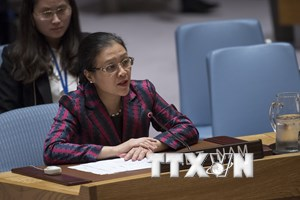 Việt Nam kêu gọi HĐBA tham gia giải quyết xung đột Israel-Palestine
