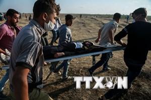OIC yêu cầu thành lập lực lượng quốc tế bảo vệ người Palestine