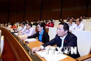 Quốc hội thông qua Luật Trưng cầu dân ý, thi hành từ 1/7/2016