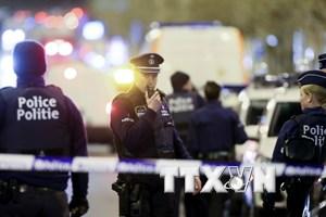 Cảnh sát Bỉ bắt một nghi phạm khủng bố trong truy quét ở Brussels