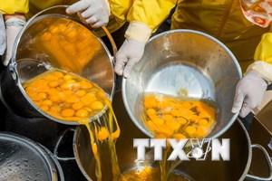 Phần Lan phát hiện lượng nhỏ chất Fipronil trong trứng nhập khẩu