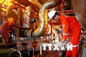 Lương ngành dầu khí giảm tới 5% do biến động thị trường thế giới