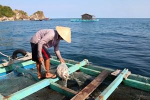 CPTPP sẽ tạo ra sức hút đầu tư mới cho lĩnh vực nuôi biển Việt Nam