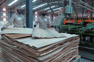 Các doanh nghiệp ngành gỗ đón nhận nhiều cơ hội từ hiệp định CPTPP