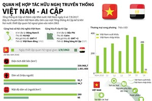 [Infographics] Quan hệ hợp tác hữu nghị truyền thống Việt Nam-Ai Cập