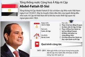 [Infographics] Tổng thống Ai Cập đầu tiên thăm Việt Nam