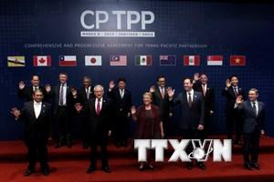 Thượng viện Mexico nỗ lực thông qua CPTPP trong tháng Tư