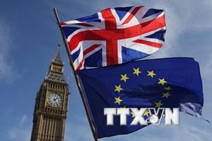 Người Anh ủng hộ trưng cầu ý dân nếu đàm phán không đạt thỏa thuận?