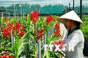 Sắp triển khai gói tín dụng 100.000 tỷ đồng nông nghiệp công nghệ cao
