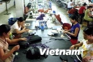 EC chưa phản ánh đúng hoạt động sản xuất giày VN
