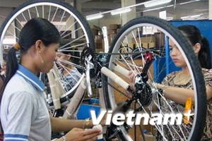 Yêu cầu EC bỏ thuế chống phá giá xe đạp Việt Nam