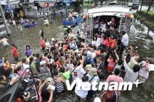 LHQ: Thế giới cần rút bài học từ trận lũ ở Thái Lan