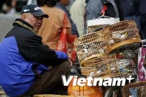 Trung Quốc tăng cường kiểm soát chặt chẽ cúm H7N9