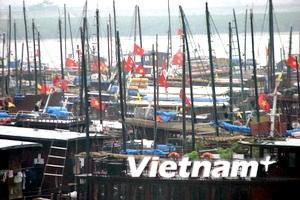 """Quảng Ninh """"chạy đua"""" phòng chống cơn bão số 5"""