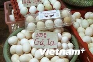 """Hà Nội: Tăng cường """"truy tìm"""" trứng gà tẩy trắng"""