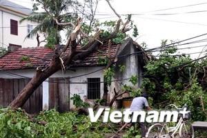 Bão số 3 gây thiệt hại lớn, 31 người thương vong