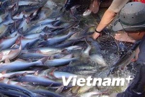 Yêu cầu WWF đưa cá tra VN khỏi danh sách đỏ