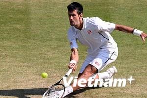 Hạ gục del Potro, Djokovic vào chung kết Wimbledon