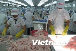6 doanh nghiệp VN được giảm thuế cá tra vào Mỹ