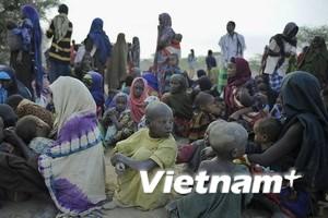 LHQ lập cầu hàng không cứu trợ khẩn cấp Somalia