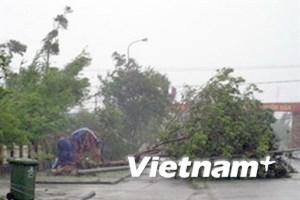 Bão số 9 suy yếu dần thành áp thấp nhiệt đới
