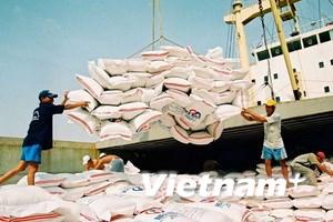 Giá gạo thế giới trên đà tăng có lợi cho Việt Nam