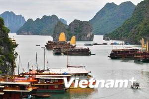 Người Việt tại Malaysia bầu chọn Vịnh Hạ Long
